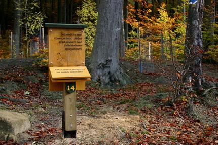 dětská lesní naučná stezka
