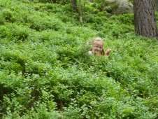 ...zabloudili do hlubokého pralesa...