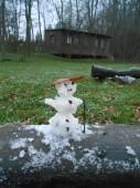 První letošní sněhulík
