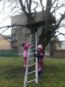 Po stromě to nešlo, tak jsme našly žebřík...