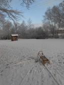 Sněhové království