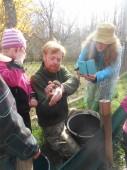 stihli jsme i pomoci žabkám na cestě do rybníka