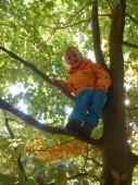 v korunách stromů...