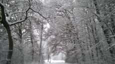 Sněhové sedmihorské království.