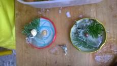 Zmrzlé dekorace.