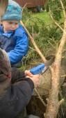 Příprava staročeské májky - nejprve je třeba odřezat spodní větve...