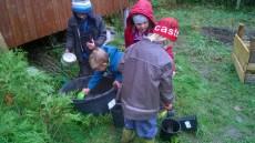 Hokus pokus - zasadili jsme semínka z liliovníku, douglasky, smrku a borovice - kdo ví, třeba se něco vyklube ;)